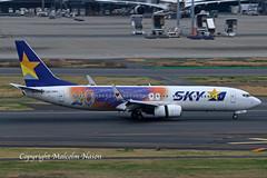 B737 JA73NQ SKYMARK special colours 1 (shanairpic) Tags: jetairliner passengerjet b737 boeing737 tokyo haneda skymark specialcolours n73nq