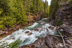 The Stehekin River At High Bridge (rebeccalatsonphotography) Tags: canon 5ds 1635mm wideangle wa washington washingtonstate river water whitewater forest northcascades nationalpark rebeccalatsonphotography northcascadescomplex