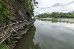 Boardwalk, Tennessee River, Ijams Nature Center, Knox County, Tennessee 1 (Chuck Sutherland) Tags: boardwalk tennesseeriver amberrobinson river creek stream water clouds overcast rock outcrop strata ordovician valleyandridge ijamsnaturecenter knoxcounty tennessee tn knoxville