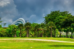 Gardens by the Bay with Cloud Forest conservatory in Singapore (UweBKK (α 77 on )) Tags: city urban singapore southeast asia sony alpha 77 slt dslr gardensbythebay garden bay park green grass tree cloudforest cloud forest dome conservatory sky grey