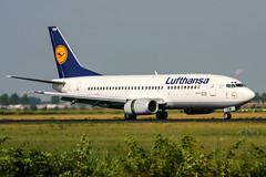 D-ABEW (PlanePixNase) Tags: amsterdam ams eham schiphol planespotting airport aircraft lufthansa boeing 737 737300 b733