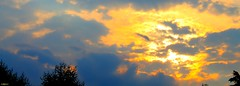 bomb (archgionni) Tags: natura nature cielo sky tramonto sunset nuvole clouds alberi trees giallo yellow