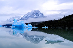 The Lago Grey (Black-Brick) Tags: chile blue trees cloud patagonia snow mountains green ice nature water grey air glacier park morning light shadow sky scale del landscape view floating national torres paine