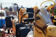 Horse (soyer_rodrigue) Tags: nikon nikond5100 d5100 westende cuistax horse cheval jouet bokeh noordzee belgique belgium vlaanderen digue sea