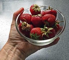 Organic Strawberries From Indian Creek Farm (☼☼ Jo Zimny Photos☼☼) Tags: odc includeyourhand holding dish glass strawberriesorganicfreshfrom indian creek farm hand mine