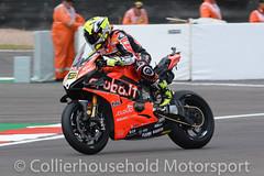 WSBK - R3 (41) Alvaro Bautista (Collierhousehold_Motorsport) Tags: worldsuperbikes superbikes wsbk worldsbk doningtonpark msv pirelli pata hyundai tissot proseccodoc motul ducati kawasaki yamaha honda bmw