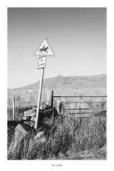 For ¼ Mile (Rory Prior) Tags: calderdale id11 ilfordfp4plus ilfordfp4 mankinholes rollei35se stoodleypike yorkshire bw field film gate hillside road sign summer