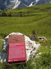 IMG_20190710_115231 (Puntin1969) Tags: telefonino vacanze luglio trentino montagna altavaldifiemme fiemme