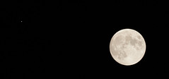 Saturn and the Moon getting close (gene.mcgill95) Tags: moon saturn astro astrophotography night sky planet