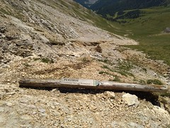IMG_20190705_124604 (Puntin1969) Tags: telefonino vacanze luglio trentino montagna altavaldifiemme fiemme