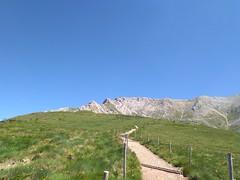 IMG_20190705_110008 (Puntin1969) Tags: telefonino vacanze luglio trentino montagna altavaldifiemme fiemme cime
