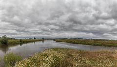 Leinemündung (links) in die Aller (Friedels Foto Freuden) Tags: clouds wiese wolken blumen fluss leine aller canond80 breathtakinglandscapes