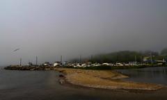 chasing fog (A. Wrench) Tags: summer mist lake beach water birds fog wisconsin creek marina river boat sand stream seagull gull shoreline shore mast bluffs shoal