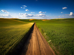 Palouse Pleasures (EdBob) Tags: palouse easternwashington agriculture agricultural steptoe steptoebutte steptoebuttestatepark lentils wheat quiet solitude bluesky clouds summer drone dji phantom3 aerial nature landscape outdoors hills rolling nopeople pacificnorthwest washington washingtonstate whitmancounty crop grow growing rural country countryside nowhere edmundlowephotography edmundlowe edlowe west american america allmyphotographsare©copyrightedandallrightsreservednoneofthesephotosmaybereproducedandorusedinanyformofpublicationprintortheinternetwithoutmywrittenpermission