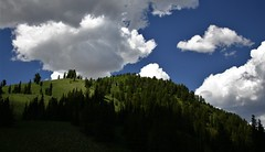 Summer Clouds (The VIKINGS are Coming!) Tags: clouds vacation wyoming mountains blueskies wilderness elk wolf bare eagle hawk trees forest sunny pines spruce fir habitat offroad dirtroad trek hike nakedbeauty
