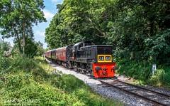 D9537 | Duffield | 16th July '19 (Frank Richards Photography) Tags: d9537 eric class 14 ecclesbourne valley railway duffield derbyshire train diesel tuesday 16th july 2019 nikon d7100 black british england uk br class14 mark1 coach sun green locomotive paxman ventrua