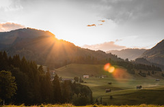 Sunset over Bavaria (alexander_skaletz) Tags: nature sunset gras details sunny tees flowers sigma flower sigmadeutschland nikon nikondeutschland mood spring warm village green orange mountains new sunlight germany landscape landscapephotography tree