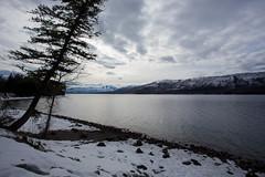 IMG_0767 (Nomadventurous) Tags: montana glaciernationalpark glaciers lake mountains snow ice winter fulltimerv rvlife rving travel wanderlust adventure explore nature