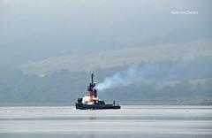 SD Impulse (Zak355) Tags: rothesay isleofbute bute scotland scottish tug ship shipping boat vessel sdimpulse riverclyde