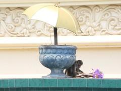 Offerings (Andrew 62) Tags: monkey umbrella offerings lotusflowers urn frieze tiles