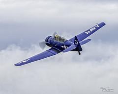 Craig Nelson piloting his 1960 North American SNJ-5 Texan C/N 88-15173 (N154CF) (Hawg Wild Photography) Tags: terry green nikon d850 sigma 150600mm contemporary skagitcountywashington skagitvalley kbvs