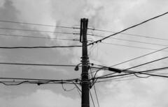 Lamp Post (Manuel Goncalves) Tags: fujineopanacros100 standdevelopment nikonfg20 nikkor28mm blackandwhite santos brazil 35mmfilm analogue epsonv500scanner