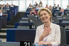EU Politics: A Narrow Vote for Progress