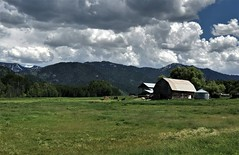 Wyoming Homestead (The VIKINGS are Coming!) Tags: barn ranch wyoming pasture highcountry cattle clouds summer