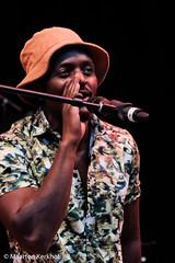 Sauti Sol (Kenia) (22 van 24) (Maarten Kerkhof) Tags: afrobeatsinthepark fujifilmxe2x sautisolkenia thehagueafricanfestival thehagueafricanfestival2019 zuiderparktheater xe2
