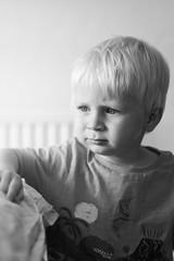 Arthur, day 220, 365 days / Year 2. (evilibby) Tags: arthur toddler portrait blackandwhite blackwhite bw bedroom arthurs365days