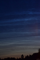 Noctilucent Clouds (Felicia Brenning) Tags: noctilucent clouds noctilucentclouds nature sky ciel night evening nikon nikond5600 nikonphotography flickr