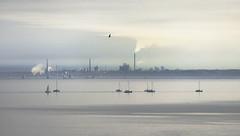 (geowelch) Tags: toronto humberbay lakeontario sailboat calm evening marine industrial landscape seascape telephoto haze panasoniclumixgx7 panasonicgvario45200mm