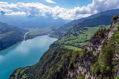 Lake Walen (Bephep2010) Tags: berg schweiz switzerland see sommer sony himmel alpen alpha stgallen wald aussichtspunkt felsen sanktgallen stgall walensee 2019 amden lakewalen chapf ilce7m3 7markiii sel24105g summer sky mountain lake alps clouds forest rocks wolken viewpoint kantonstgallen ⍺7iii