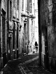 Rue Saint ELOI, Bordeaux, canicule de juillet 2019. (lionelmaingueneau) Tags: yellow chien lumière femme bordeaux rue noirblanc chaleur