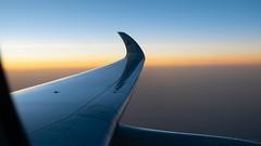 Qatar Airways Airbus A350-941 A7-ALG (StephenG88) Tags: hamadinternationalairport doha doh hia boeing airbus 1stjuly2019 1719 7119 qatar manchesterairport southside man egcc 23l 23r lineup takeoff qatarairways qr qtr sunset arabian a350 a359 a350900 a350941 a7alg