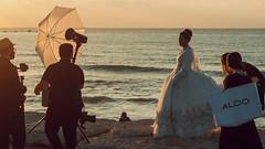 wedding paparazzi (Conny Spandl) Tags: telaviv israel beach wedding bride braut photography sunset panaso 45 mm