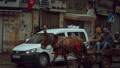 stars and bucks. (Conny Spandl) Tags: ramallah palestine israel donkey street streetphotography panaso 45 mm