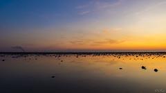 Oesterdam (Omroep Zeeland) Tags: oesterdam brand rook rookontwikkeling zonsondergang