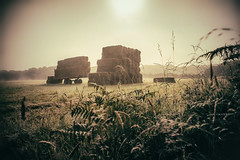 Summer Misty (Glavind Strachan Photography) Tags: hay haybales bales summer mist misty countryside english farm iddesleigh hatherleigh fields landscape