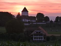 Sunset (Martinus VI) Tags: sonnenuntergang sunset sundown atardecer puesta de sol coucher du soleil tramonto y190716 martinus6 martinus6xy martinus martinusvi