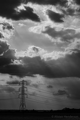 Photo of Monochrome Sunbeams