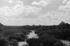 Eglise (brnltn) Tags: blackwhite black white argentique analog corse ciel paysage nuage église chemin nature rocher herbe
