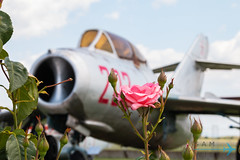 MiG-15UTI (Sam Wise) Tags: air trainer aircraft bulgaria aviation museum jet mig15 krumovo bulgarian plovdiv force fighter preservation