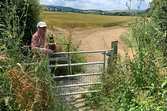 38 not too much further (Margaret Stranks) Tags: winchcombearea gloucestershire