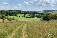 33 down to where we got a bit lost (Margaret Stranks) Tags: winchcombearea gloucestershire