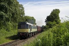 D7629 2E39 (DM47744) Tags: train trains bury elr east lancashire railway railways diesel engine track loco summer gala 2019 preserved preservation rail locomotive class 25 d7629 sulzer br green type 2
