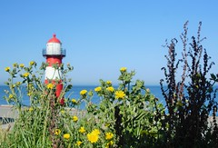 Westkapelle (Omroep Zeeland) Tags: westkapelle vuurtoren walcheren zeeland zomer bloemen berm gemeenteveere