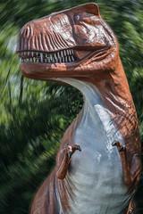 Itty bitty brain, small arms, really big teeth (sniggie) Tags: cavecity dinosaurworld kentucky tyrannosaurusrex dinosaur predator trex
