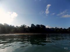 Bahía Drake, esperando a navegar, dic 2016/ Drake bay, waiting to sail, dec 2016 (vantcj1) Tags: agua mar oceáno niebla neblina cielo nubes bosque puerto vegetación naturaleza viaje barco bote quietud horizonte paisaje