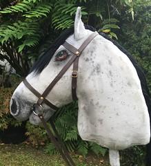 Hobby Horse Storm (Tawney Horses) Tags: hobby stick horse one kind horsing